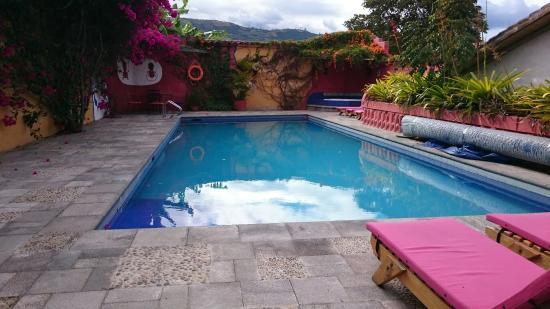 Tumbabiro, Ecuador: DSC_3476_large.jpg