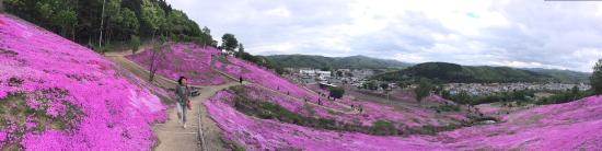 Takinoue-cho Foto