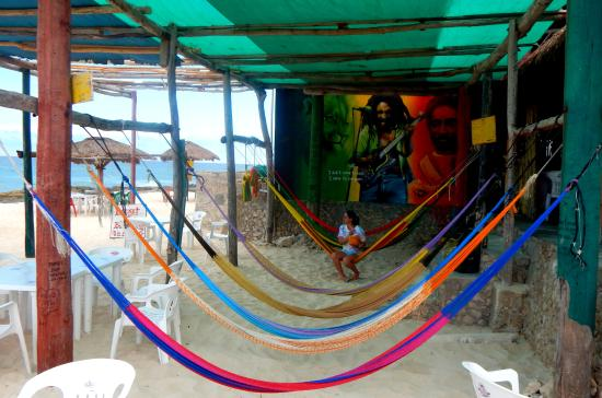 Rasta Bar: Coco frio and hammocks