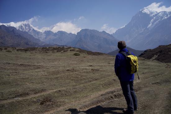 Dzongri La: Dzongli meadows and peaks