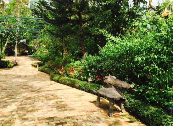 Sonya's Garden B&B: photo1.jpg