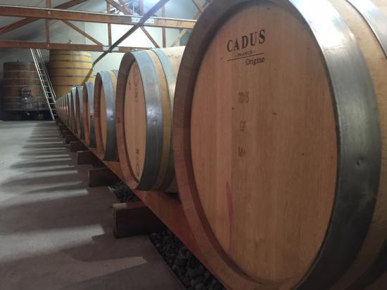 Rapaura, Новая Зеландия: barrels