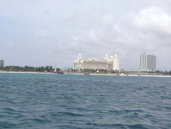 Pelican Adventures: Champagne Brunch Cruise