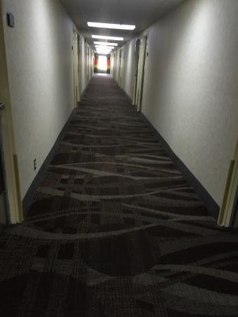 Quality Inn: First floor handicap room! Two queen beds.