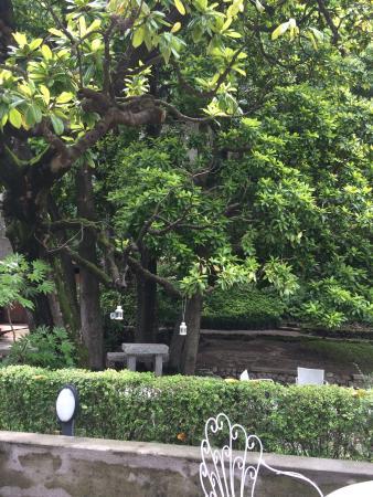 photo1.jpg - Foto di Hotel Villa Giulia Ristorante Al Terrazzo ...