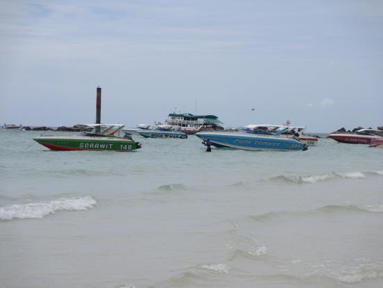 ince kumlu plajı - Picture of Koh Lan (Coral Island), Pattaya - TripAdvisor