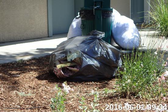 Yosemite View Lodge: Le sac de chutes de moquette. Les sacs blancs sont des sacs de draps.