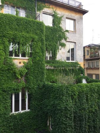 Hotel San Carlo: Veduta dalla finestra
