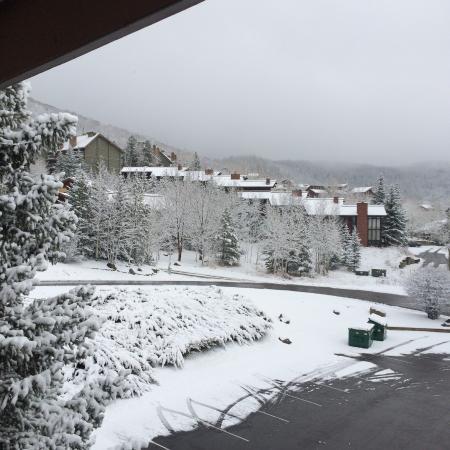 Ski Inn Condominiums: white mornings