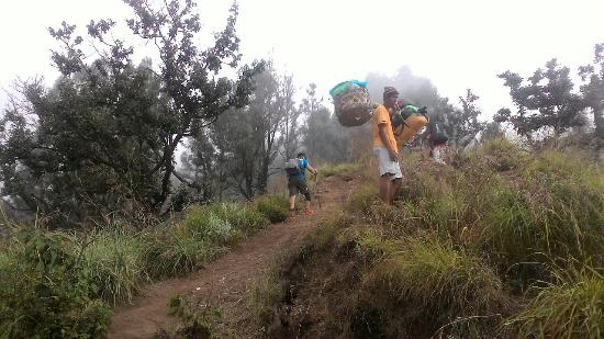 Eddy's Trek Backpacker Rinjani