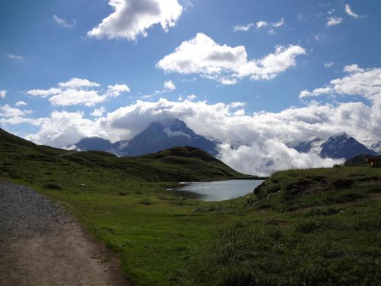 Grindelwald, Switzerland: バッハアルプゼーから望む