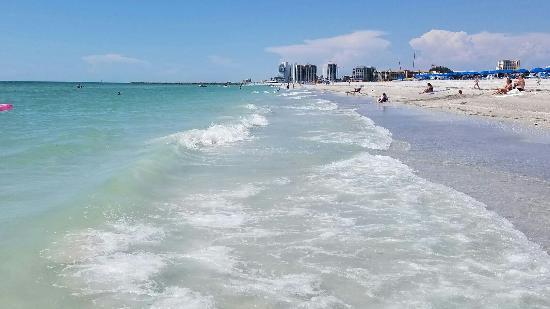 Sheraton Sand Key Resort Clearwater Beach Fl