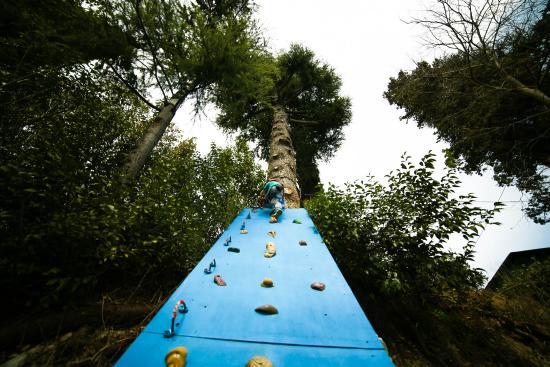 Parco Avventura Rimbalzello Adventure