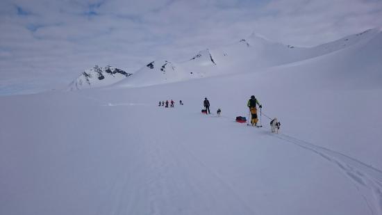Longyearbyen, النرويج: DSC_0359_11_large.jpg