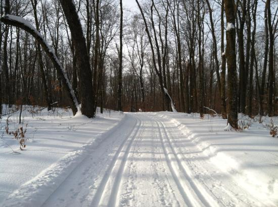 Callaway, MN: Ski trails groomed for the best x ctry skiing you will ever experience.