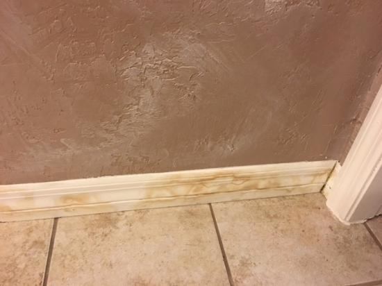Water Damage On The Baseboards Of The Bathroom Picture Of Runaway - Bathroom water damage