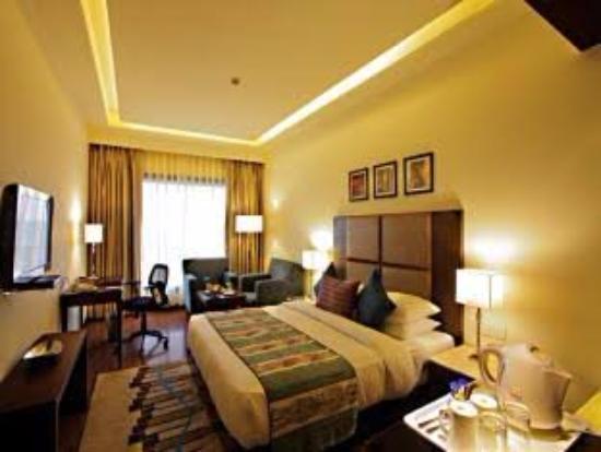 Aveda Kamal Palace : Suite room all of facility providing aveda kamal place