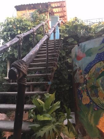 Hostel Candelaria : Stairs to some more rooms