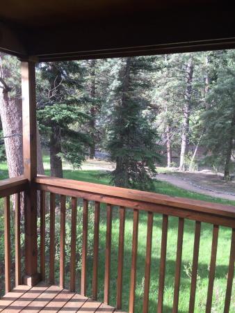 Great Cabin in Estes Park