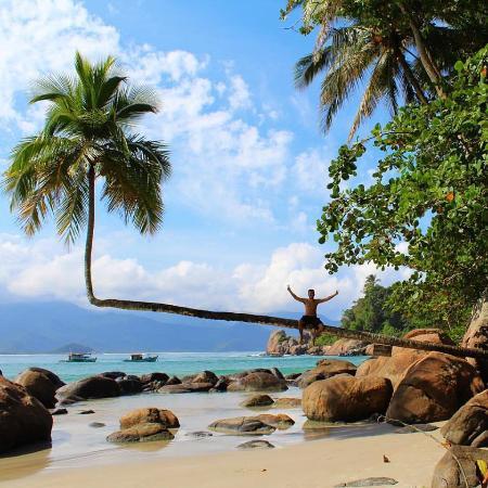 Aventureiro Beach : Esta foto é do famoso coqueiro torto na Praia do Aventureiro!Lugar maravilhoso!
