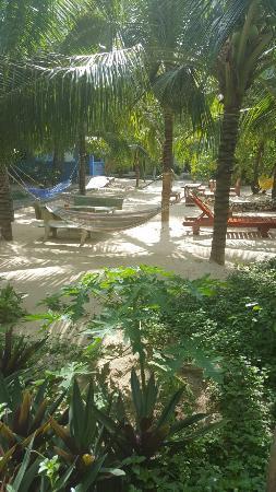Cocosand Hotel: 20160529_084005_large.jpg