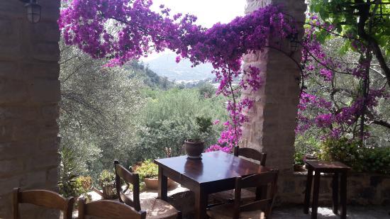 Eleonas: View from the taverna terrace