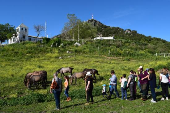 Cabra, España: rutas