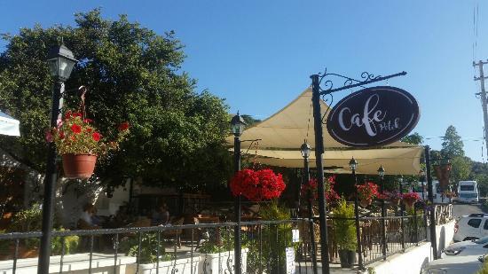 Cafe Petek