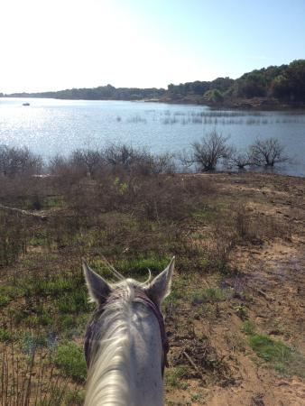 Widowmaker Trail Rides : Morning ride to the lake