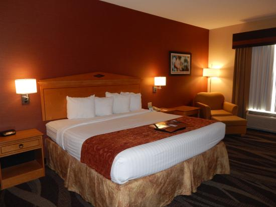 Best Western Plus University Inn: King Bed Room