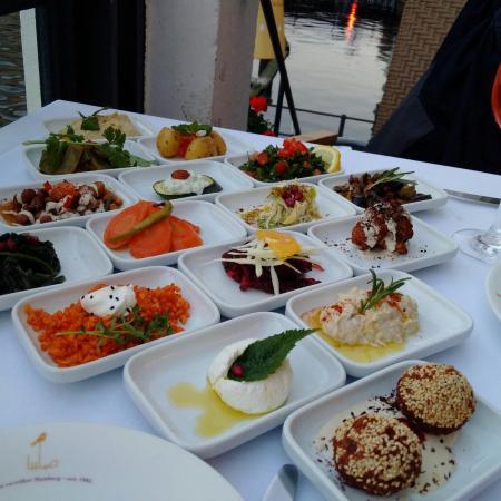 Lovely location wonderful Syrian cuisine