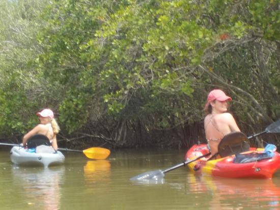 A1a Beach Als Manatee Kayak Tour Cocoa