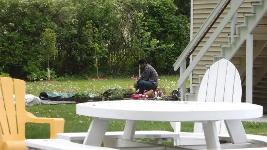 Williamstown, MA: Preparing more flowers to plant!