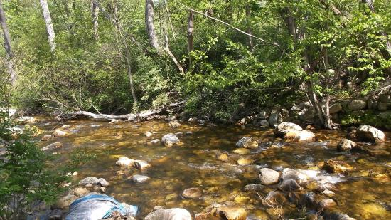Williamstown, MA: Nothing like the soothing sound of a brook to help you sleep.