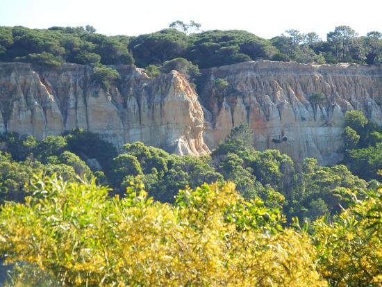 Arriba Fóssil da Costa de Caparica