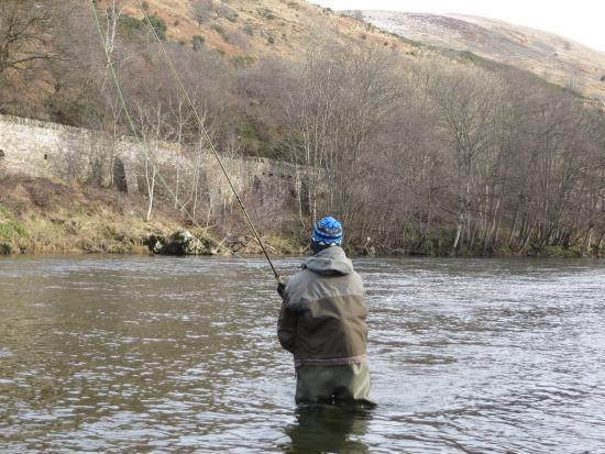 Selkirk, UK: Fly fishing the River Tweed in winter