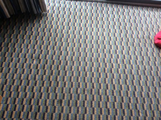Econo Lodge Airport : Tapis de la chambre