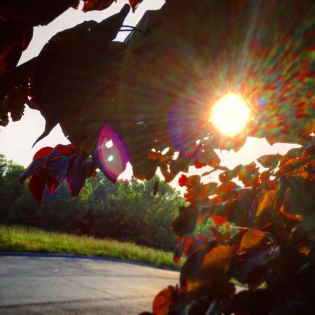 Mocksville, NC: photo7.jpg