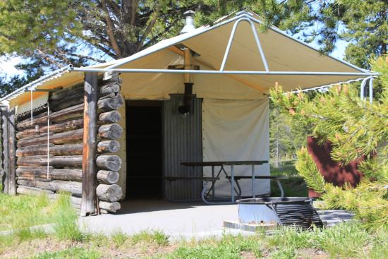 Colter Bay Village Tent Cabin At