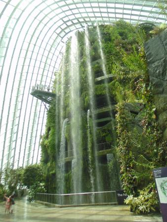 World\'s largest indoor waterfall - Picture of Gardens by the Bay ...
