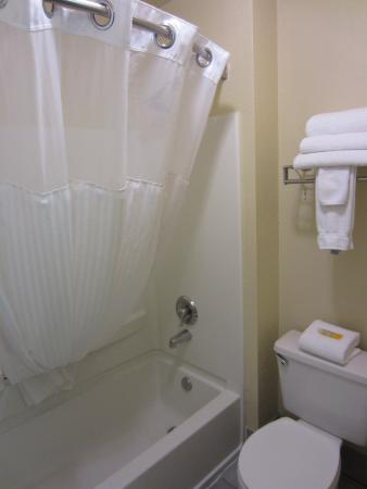 Lexington Inn - Holbrook: Bathroom