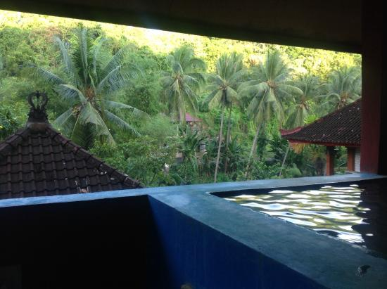Grya Sari - the Bali Hot Springs Hotel: Thermal water..small concrete tub..maybe 8 people..at the very top