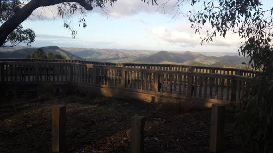 Reedy Creek, Australia: The viewing platform