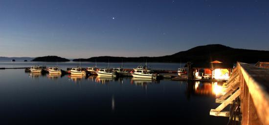 Salmon Falls Resort: Marina at Night