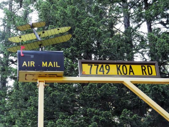"""Shingletown, CA: Humorous """"Air Mail"""" mailbox at entrance."""