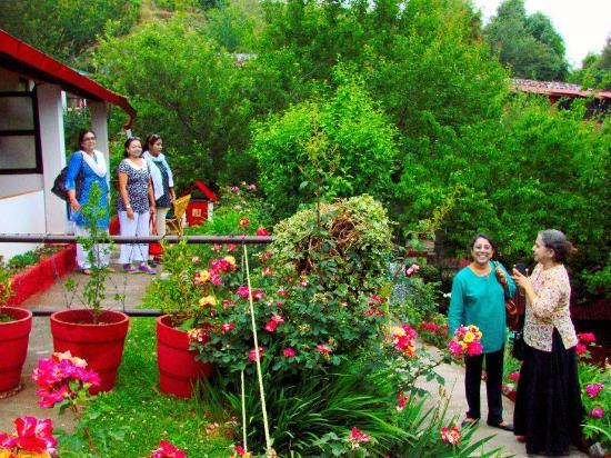 Mountaintrail: Walk to the rooms through lush gardens