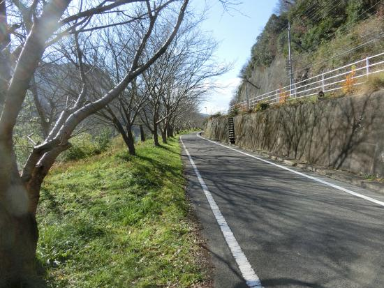 ‪Katatetsu Roman Cycling Road‬