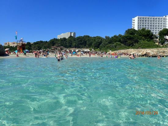Tripadvisor Hotel Samoa Calas Mallorca