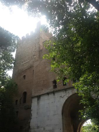 Museo delle Mura : Vista dal basso