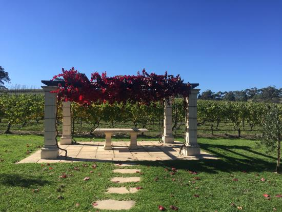 Fergusson Winery and Restaurant: Lovely time at Fergusson